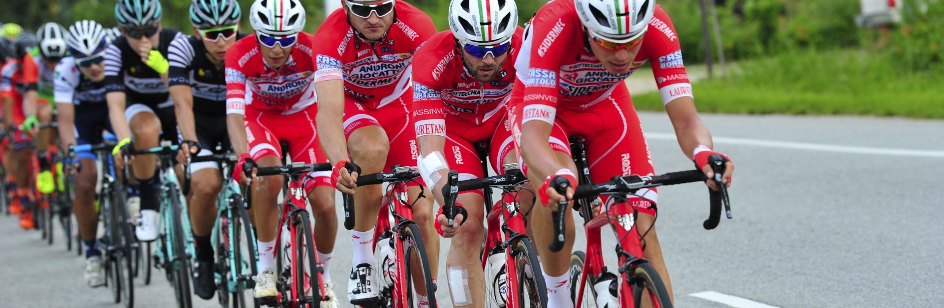 Bottecchia Team